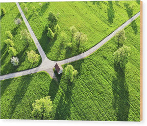 Bright Green Spring Meadow Aerial Photo - Wood Print