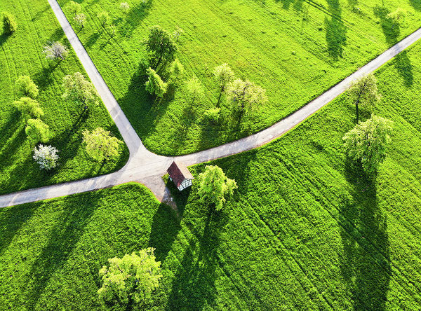 Bright Green Spring Meadow Aerial Photo - Art Print