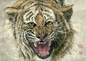 Tiger Roar Chinese Brush Painting by River Han