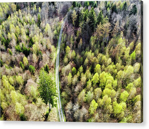 Early Spring Forest From Above - Acrylic Print