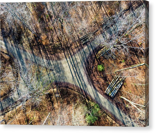 Forest Path Crossroad From Above Drone Photography - Canvas Print