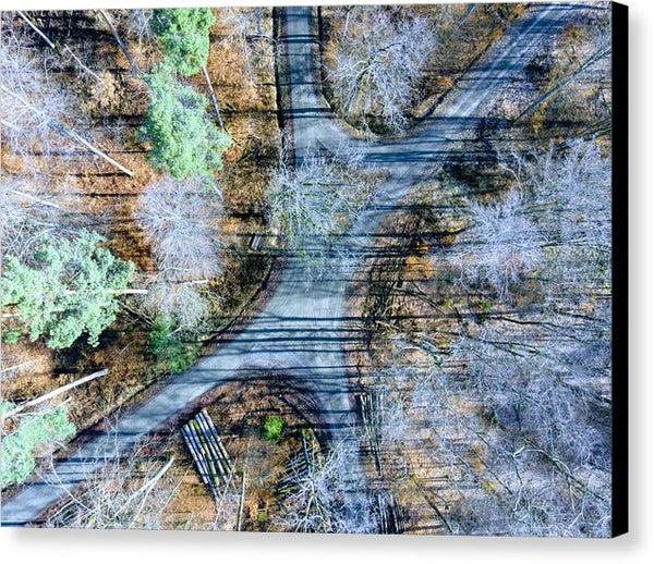 Forest Path From Above Cool Drone Photo - Canvas Print