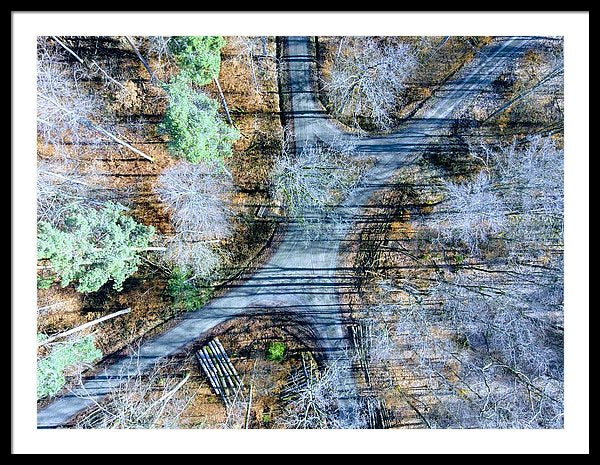 Forest Path From Above Cool Drone Photo - Framed Print