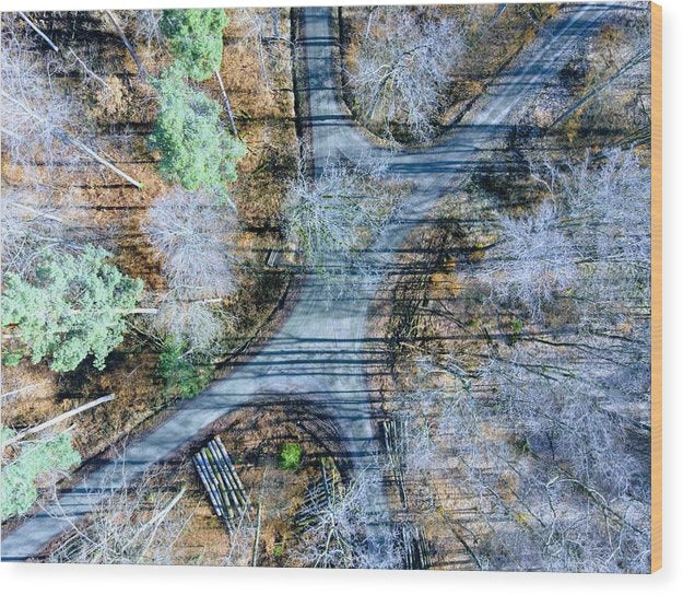 Forest Path From Above Cool Drone Photo - Wood Print