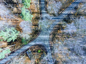 Forest Path From Above Cool Drone Photo - Art Print