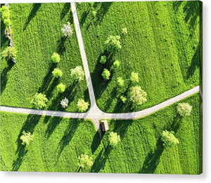 Fresh Green Meadow With Trees In Spring Aerial View - Acrylic Print