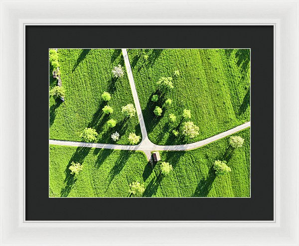 Fresh Green Meadow With Trees In Spring Aerial View - Framed Print