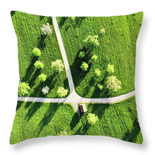 Fresh Green Meadow With Trees In Spring Aerial View - Throw Pillow