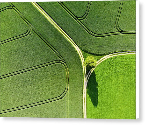 Geometric Landscape 05 Tree And Green Fields Aerial View - Canvas Print