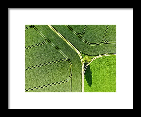 Geometric Landscape 05 Tree And Green Fields Aerial View - Framed Print