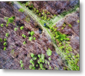 German Forest In April Aerial View - Metal Print