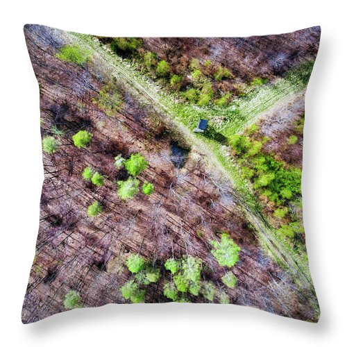 German Forest In April Aerial View - Throw Pillow