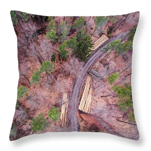 Green And Orange Forest Aerial Image - Throw Pillow