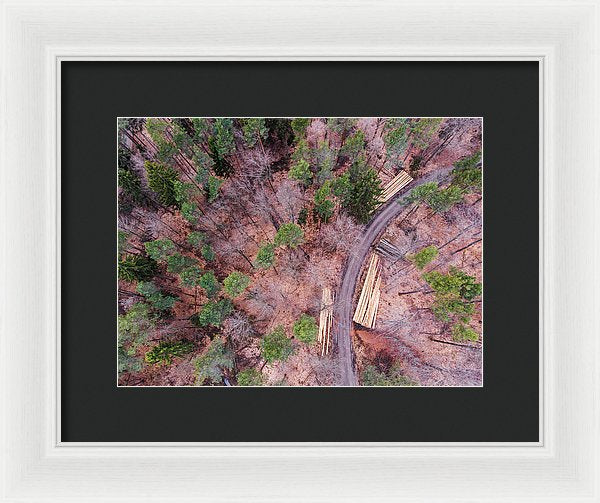 Green And Orange Forest Aerial Image - Framed Print