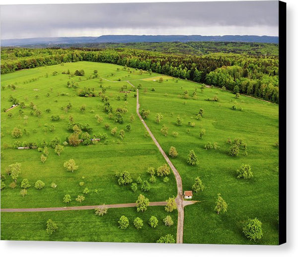 Green Meadow With Trees In Germany Aerial - Canvas Print