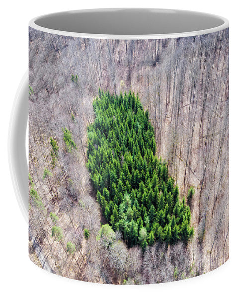 Green Tree Island In March Forest From Above - Mug