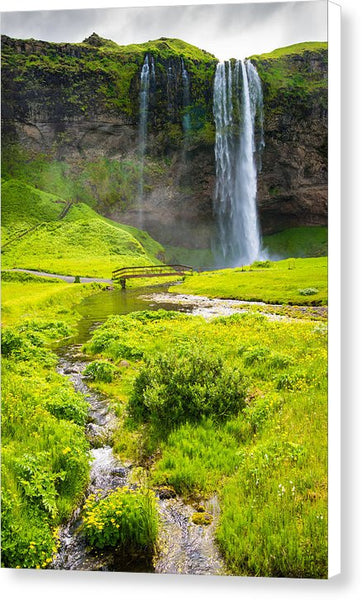 Iceland Seljalandsfoss Waterfall - Canvas Print