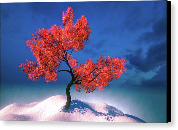 Red Tree And Blue Sky - Canvas Print