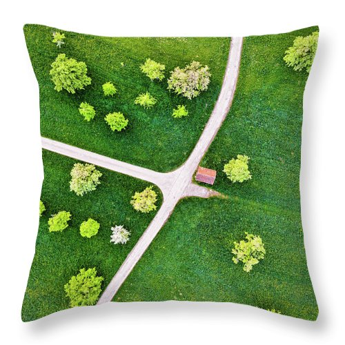 Roads And Green Spring Meadow With Trees From Above - Throw Pillow