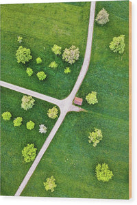 Roads And Green Spring Meadow With Trees From Above - Wood Print