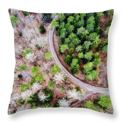 Trees And Path From Above Drone Photography - Throw Pillow
