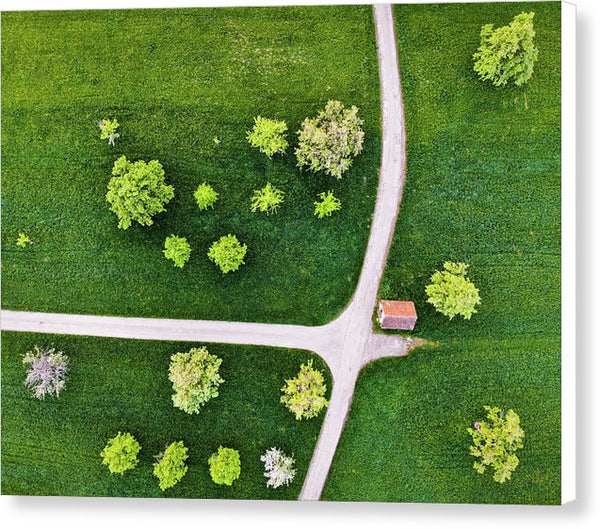 Trees And Roads From Above Drone Photography - Canvas Print