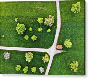 Trees And Roads From Above Drone Photography - Acrylic Print