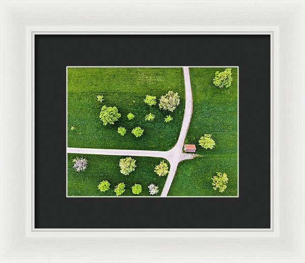 Trees And Roads From Above Drone Photography - Framed Print
