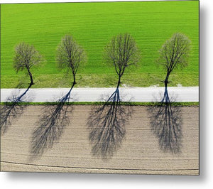 Trees And Shadows Aerial View - Metal Print