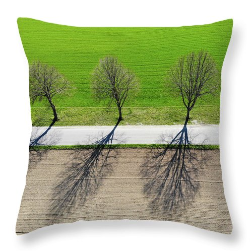 Trees And Shadows Aerial View - Throw Pillow