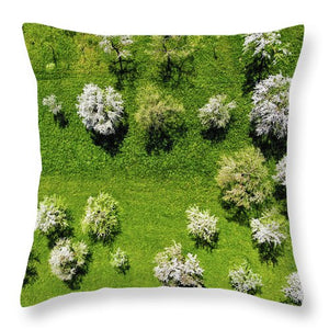 Trees On Green Spring Meadow Aerial View - Throw Pillow