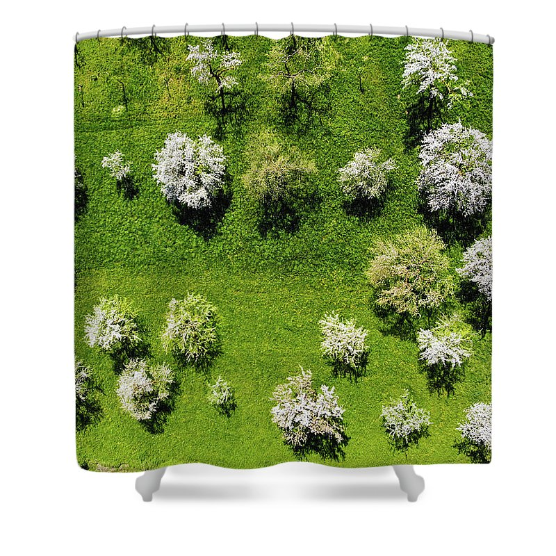 Trees On Green Spring Meadow Aerial View - Shower Curtain