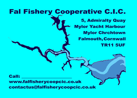 Fal Fishery Cooperative CIC - Postcard