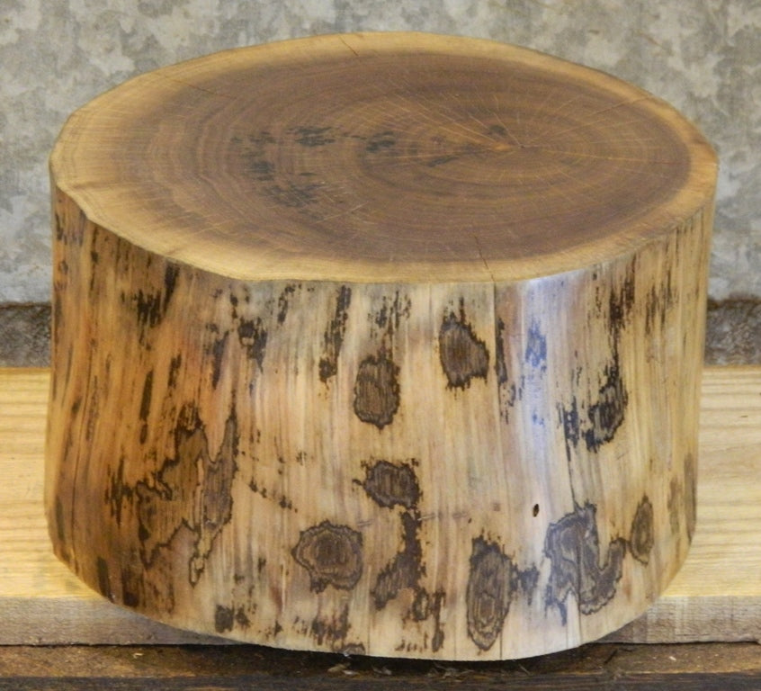 Rustic Room Art/Display Stand/End Table/Rustic Walnut Stump Stool 10215