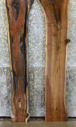 2- Live Edge Bookmatched Black Walnut Sofa Table Top Slabs 1035-1036