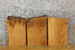 3- White Oak Craft Pack/Kiln Dried Rustic Lumber Boards 11430-11432