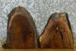 2- Rustic Live Edge Black Walnut Taxidermy Bases 12004-12005