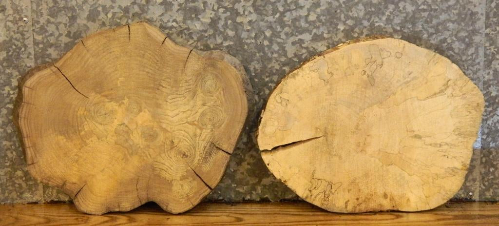 2- Natural Edge Oval Cut Hackberry/Spalted Maple Wood Slabs 12045-12046
