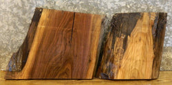 2- Craft Pack/Taxidermy Base Black Walnut Partial Live Edge Slabs 12124-12125