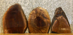 3- Salvaged Live Edge Black Walnut Taxidermy Base/Craft Pack Slabs 12186-12188