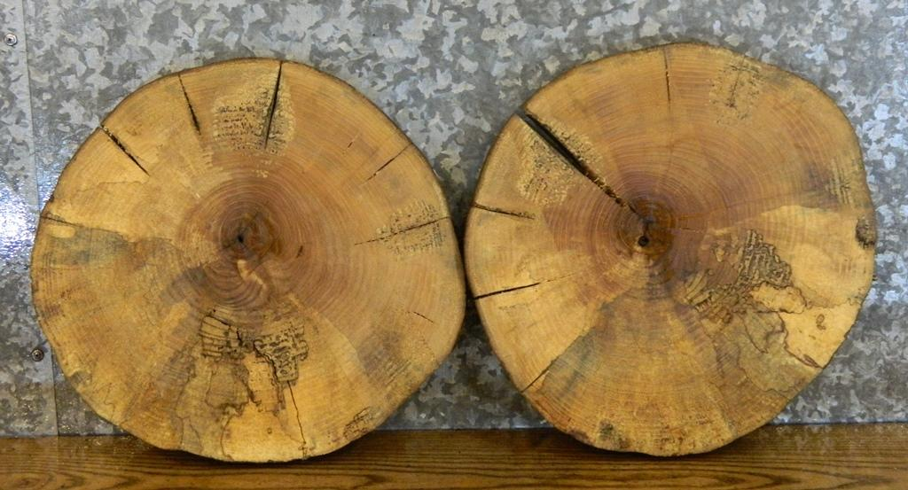 2- Round Cut Live Edge Ash Charcuterie Boards/Serving Tray Slabs 12340-12341