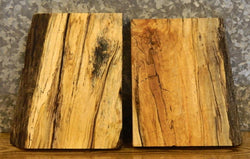 2- Partial Live Edge Craft Pack/Taxidermy Base Spalted Maple Slabs 12888-12889
