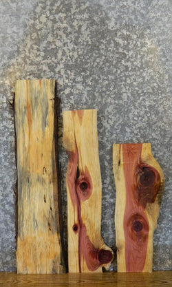 3- Salvaged Live Edge Red Cedar Craft Pack/Wood Shelf Slabs 13047-13049