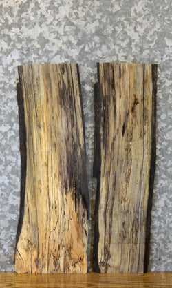 2- Partial Live Edge Spalted Maple Craft Pack/Taxidermy Bases 13223-13224