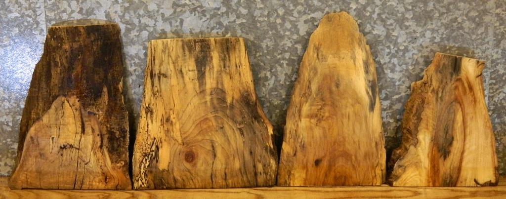 4- Natural Edge Spalted Maple Taxidermy Base/Craft Pack Wood Slabs 13648-13651