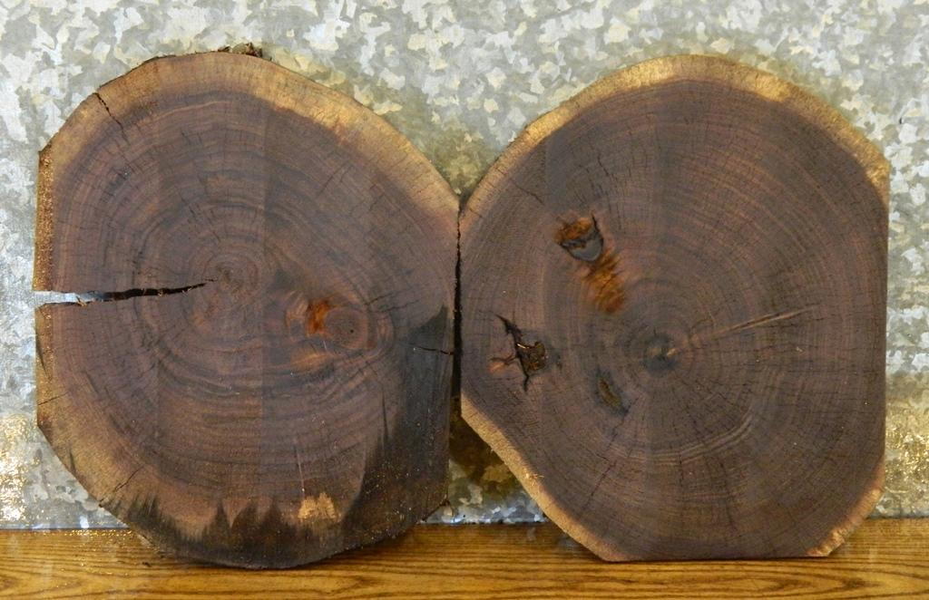 2- Round Cut Black Walnut Partial Live Edge Centerpiece Wood Slabs 14029-14030