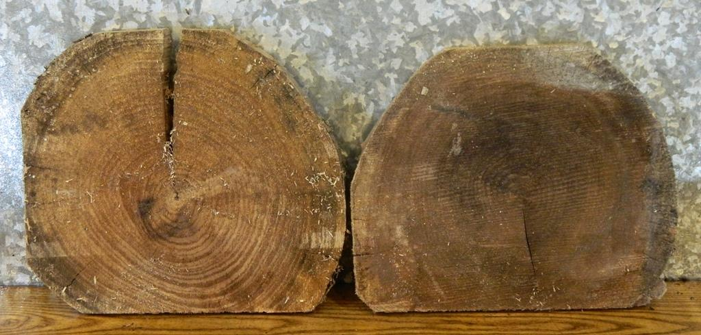 2- Rustic Black Walnut Round Cut Partial Live Edge Craft Pack Slabs 14054-14055