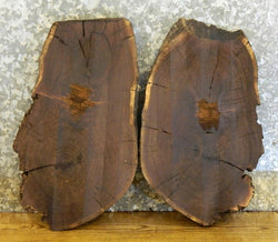 2- Partial Live Edge Black Walnut Oval Cut DIY Charcuterie Boards 14065-14066