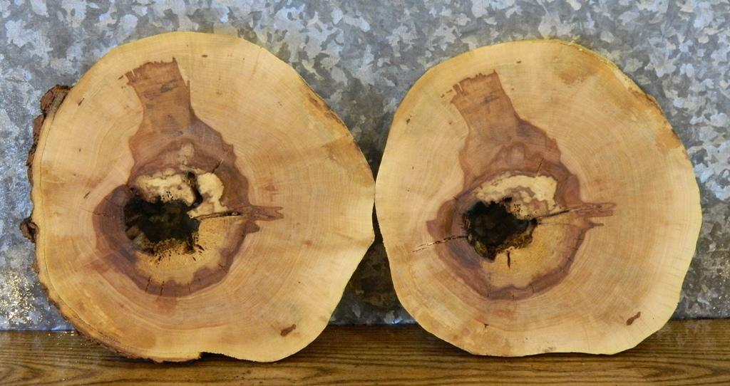 2- Rustic Round Cut Natural Edge Maple Centerpiece/Room Decor Slabs 14133-14134