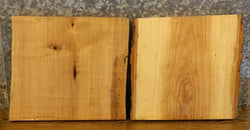 2- Rustic Live Edge Ash Butcher Blocks/DIY Charcuterie Boards/Slabs 14296-14297